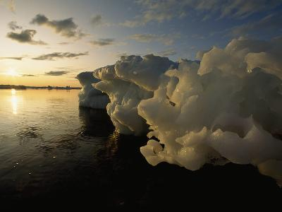 Icebergs Floating in the Arctic
