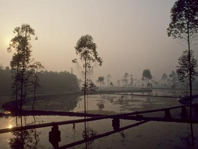 Early Morning in a Rural Area of Southern China