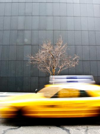 A Taxi Passes by in a Blur