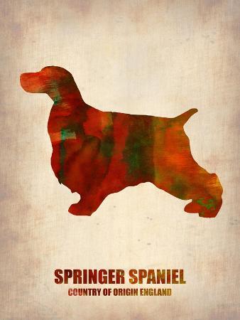 Springer Spaniel Poster