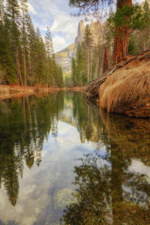Late Afternoon Along the Merced River