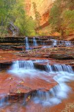 Subway Cascades and Approach at Zion
