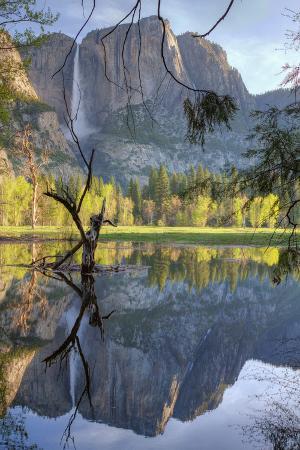 Yosemite Falls Reflection at Swinging Bridge