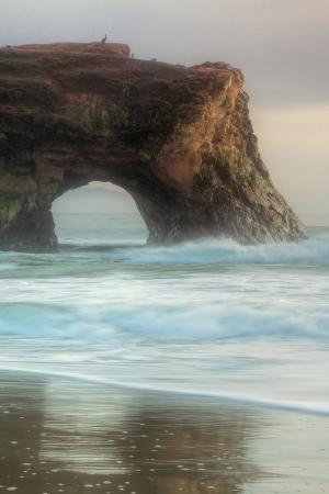 Natural Bridge Portrait, Santa Cruz