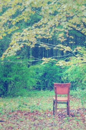 Fall Seat, Catskill Mountains, New York