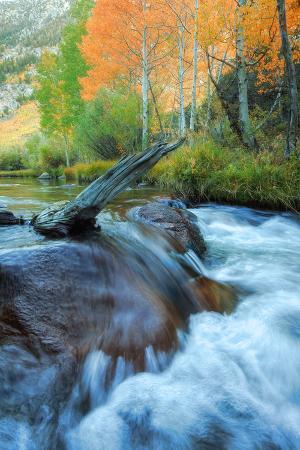 Early Fall at Bishop Creek