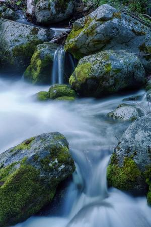 Precious Water, Alder Creek