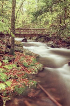 Dreamy Stream Bridge Scene