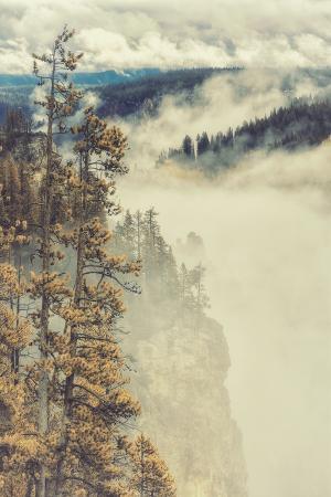 Canyon Mood and Mist