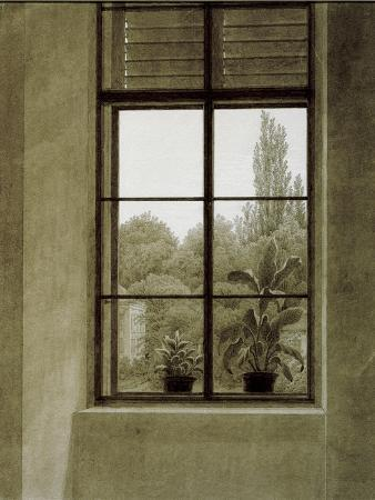 Window with View of a Park