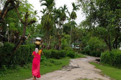 Woman Carrying Water, Assam, India, Asia
