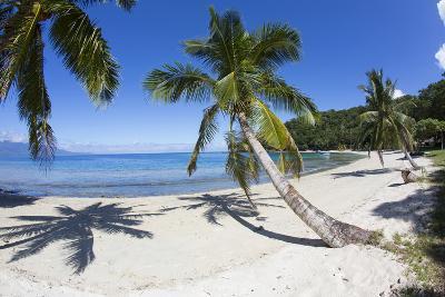 Beach, Waitatavi Bay, Vanua Levu, Fiji
