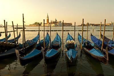 View of Canale di San Marco and with Gondolas, Venice, Italy