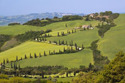 Famous Road Winding Through the Tuscan Hillside, Italy