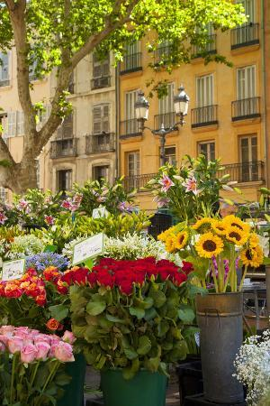 Flowers for Sale on Market Day in Aix-En-Provence, France