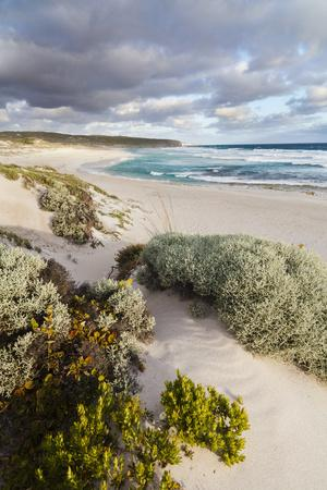 Beach, Hanson Bay, Kangaroo Island, Australia