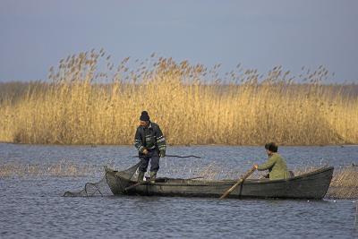 Fishing, Danube Delta, Tulcea, Romania