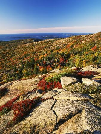 Mt Desert Island, Autumn View, Acadia National Park, Maine, USA