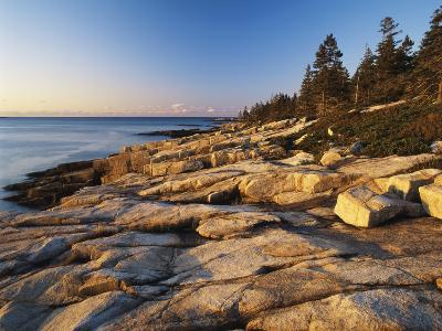 Mt Desert Island, View of Rocks with Forest, Acadia National Park, Maine, USA