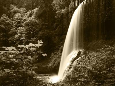 View of Middle North Falls, Silver Falls State Park, Oregon, USA