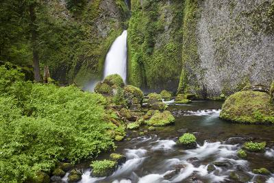 Wahclella Waterfalls, Tanner Creek, Columbia River Gorge National Scenic Area, Oregon, USA