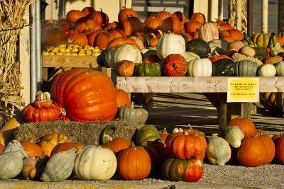 Farmer's Market, Autumn in Luling, Texas, USA
