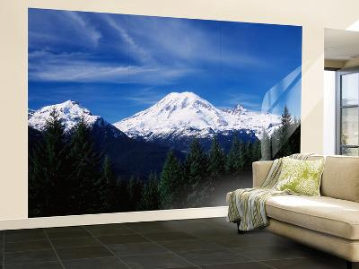 View of Mt Rainier National Park, Washington, USA