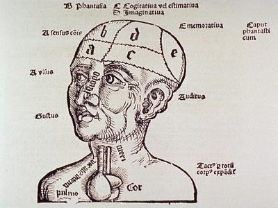 Human Head Mapping Sections of the Brain to Corresponding Body Parts, 1513