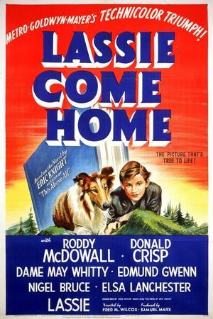 """Lassie Come Home"" 1943, Directed by Fred Wilcox"