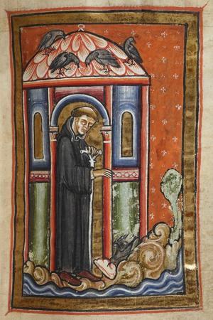 Miniature Of a Crow Bringing Lard To Cuthbert