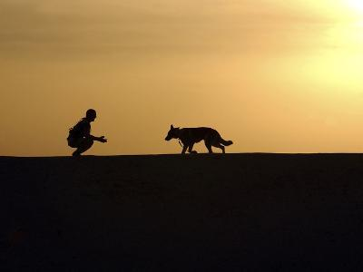 A Military Working Dog And His Handler Spend Time Together