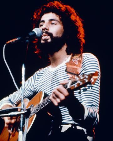 Cat Stevens Photo At Allposters Com