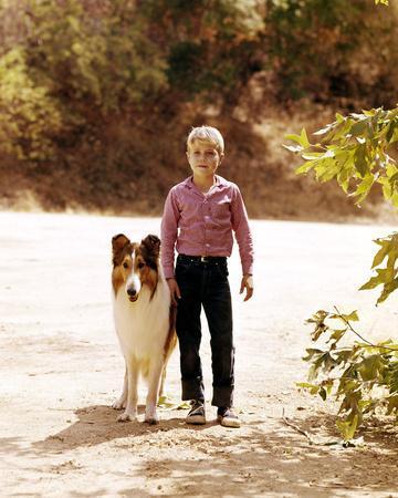 Jon Provost - Lassie