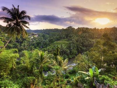 Indonesia, Bali, Ubud, Sayan Valley and Ayung River