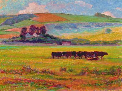 Evening Cattle, Cuckmere Valley, Sussex