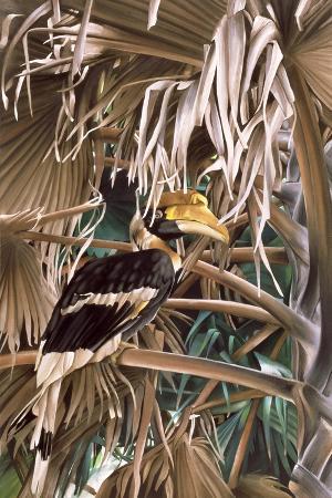 Hornbill, 1987