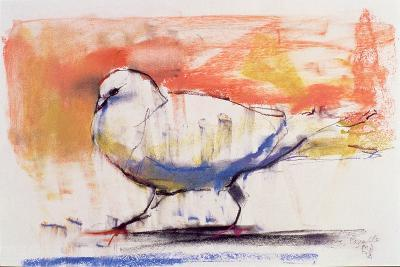 Walking Dove, Trasierra, 1998