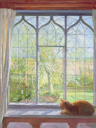 Window in Spring, 1992