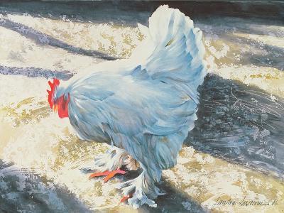 Blue Bird, 1986