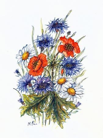 Cornflower, Poppy and Ox-Eye Daisy