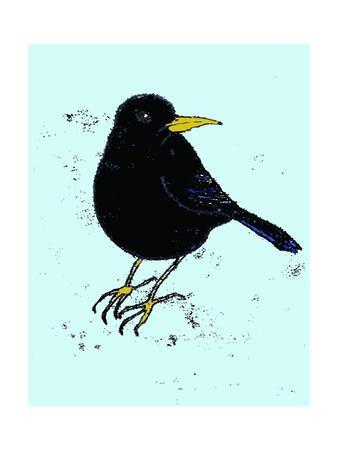 Blackbird, 2009