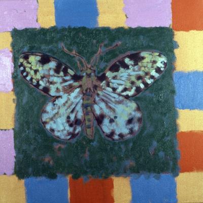 Leopard Moth, 1996