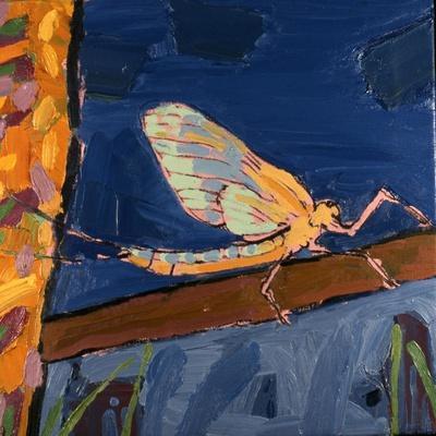 May Fly, 1991