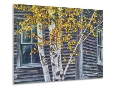 New Hampshire Cabin Detail