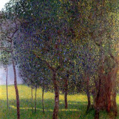 Fruit Trees, 1901
