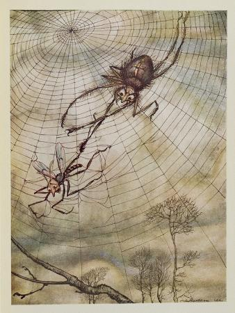 The Spider and the Fly, Illustration from 'Aesop's Fables', Published by Heinemann, 1912