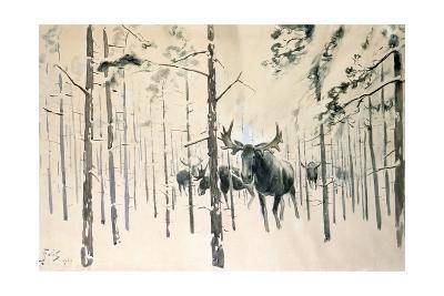 Moose, 1920