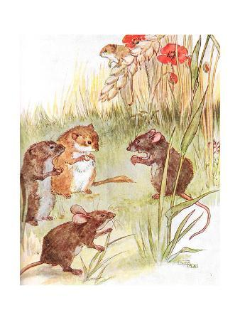 'Am Staying with Friends in the Country', Illustration from 'The Mischievious Mousie Book',…
