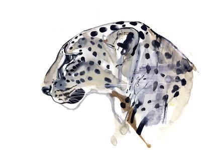 Profile (Arabian Leopard), 2008