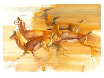 Running Gazelles, 2010
